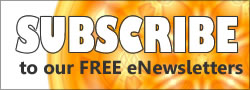 The Chakra News - Hindu, Buddhist, Sikh, Jain News eNewsletter