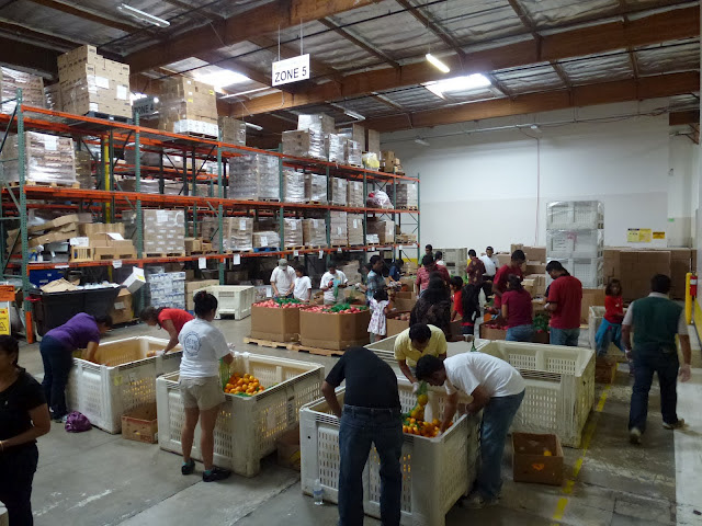 Sewa International volunteers in San Diego sort and package fresh fruit at a food bank on Sewa Day