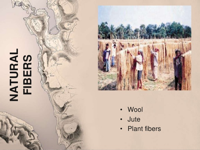 Natural fibers from ancient India